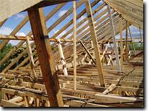 Roof Struts
